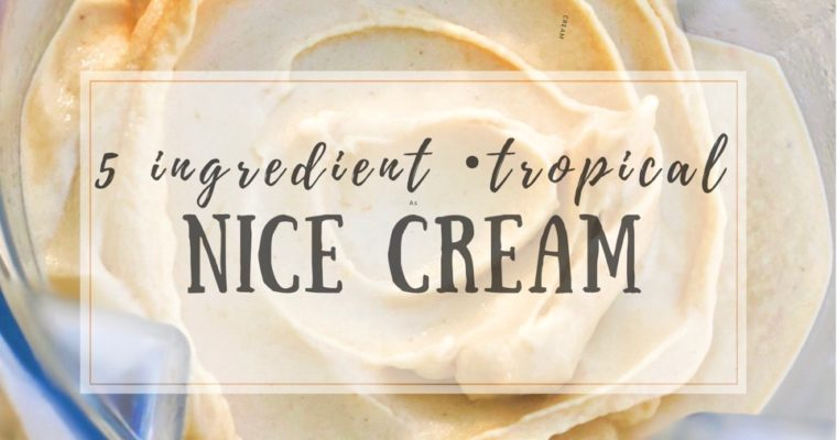 5 Ingredient Tropical Nice Cream